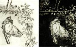 Julia Swarbrick: Printmaking  – Drypoint Workshop